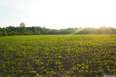 000 COCHRAN RD. S/O, Greenfield, TN 38230 - Photo 1