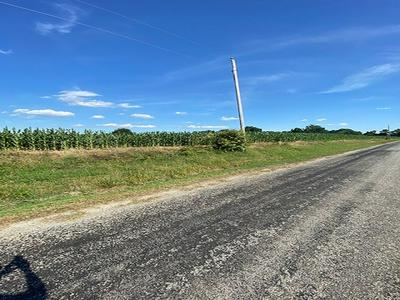 0 CAUDLE STORE ROAD, Greenfield, TN 38230 - Photo 1