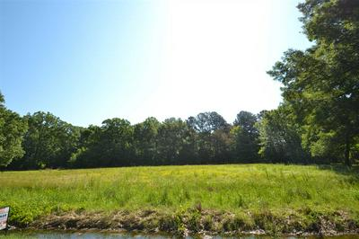 NORTH OF 18 SCARBROUGH SPUR RD, Humboldt, TN 38343 - Photo 1