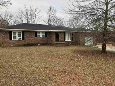 6525 STATE ROUTE 225, HENDERSON, TN 38340 - Photo 1