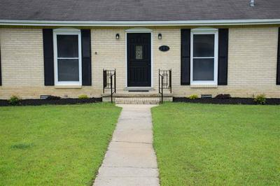 206 DIVISION ST, Dyer, TN 38330 - Photo 2