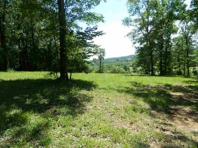 LOT 2 PURDY VIEW ACRES, Decaturville, TN 38329 - Photo 2