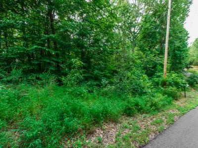 FAWN RIDGE ROAD, Parsons, TN 38363 - Photo 2