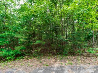 157/158 IRON HORSE TRAIL, Parsons, TN 38363 - Photo 2