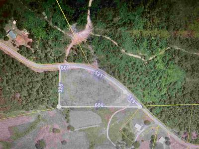 XXXX LIBERTY ROAD, Scotts Hill, TN 38374 - Photo 1