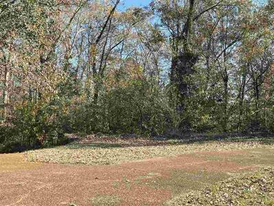 582 WALLACE RD, Jackson, TN 38305 - Photo 1