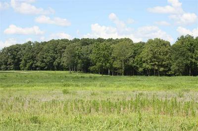 4 TRICE RD, Henderson, TN 38340 - Photo 1