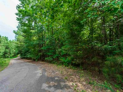 LOT 159/160 IRON HORSE TRAIL, Parsons, TN 38363 - Photo 2