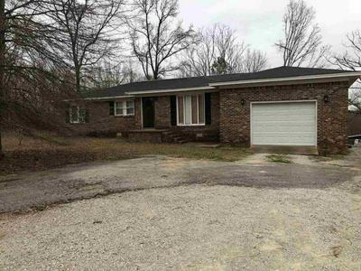 6525 STATE ROUTE 225, HENDERSON, TN 38340 - Photo 2