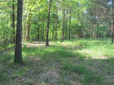 00 HWY 105, Atwood, TN 38220 - Photo 1
