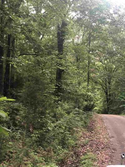 0 ARROW HEAD CIR CIRCLE, Parsons, TN 38363 - Photo 1