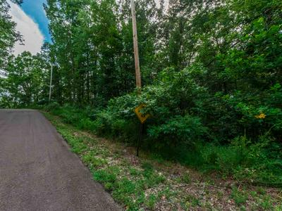 FAWN RIDGE ROAD, Parsons, TN 38363 - Photo 1