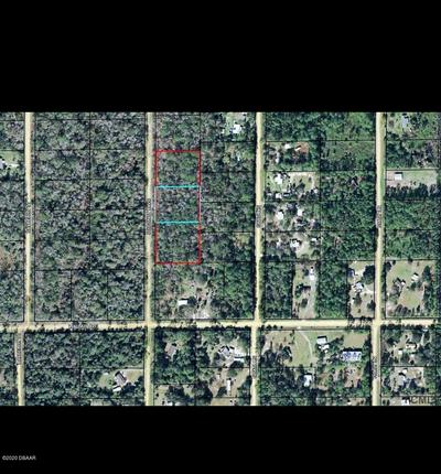 1817 COCONUT BLVD, Bunnell, FL 32110 - Photo 1