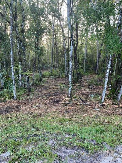 1817 COCONUT BLVD, Bunnell, FL 32110 - Photo 2