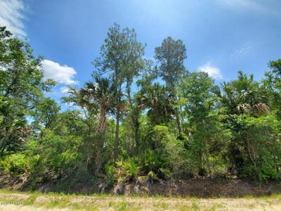 2885 WATER OAK RD, Bunnell, FL 32110 - Photo 1