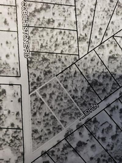 00 HEIDI LANE, Douglas, GA 31335 - Photo 1