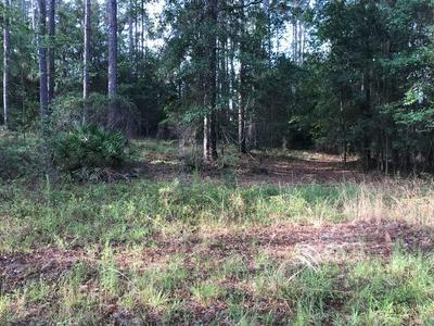 66 FOX HILLS RD LOT 2, Douglas, GA 31535 - Photo 1