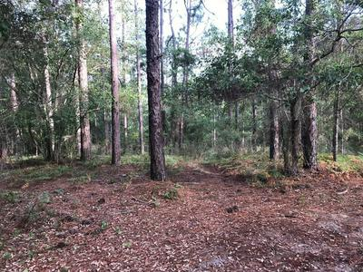 66 FOX HILLS RD LOT 2, Douglas, GA 31535 - Photo 2