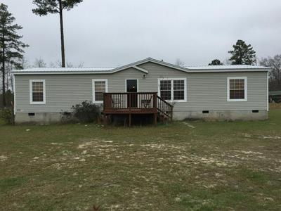 610 POOR ROBIN RD, Abbeville, GA 31001 - Photo 1