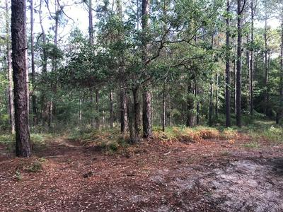 66 FOX HILLS RD LOT 1, Douglas, GA 31535 - Photo 2