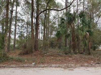 2 N MAIN ST, Chiefland, FL 32626 - Photo 2
