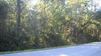 TBD CR 340, Old Town, FL 32680 - Photo 2