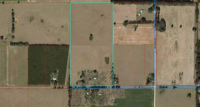 4453 NW 120TH ST, CHIEFLAND, FL 32626 - Photo 1