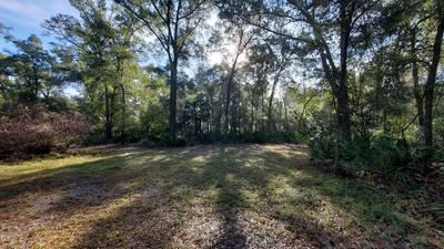 LOT 21 NW 48TH TERRACE, Chiefland, FL 32626 - Photo 1