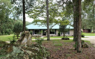 5309 NE COUNTY ROAD 337, High Springs, FL 32643 - Photo 1