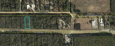 LOT 8 HIGHWAY 19, Old Town, FL 32680 - Photo 2