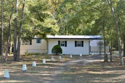 20066 COUNTY ROAD 137, Wellborn, FL 32094 - Photo 1