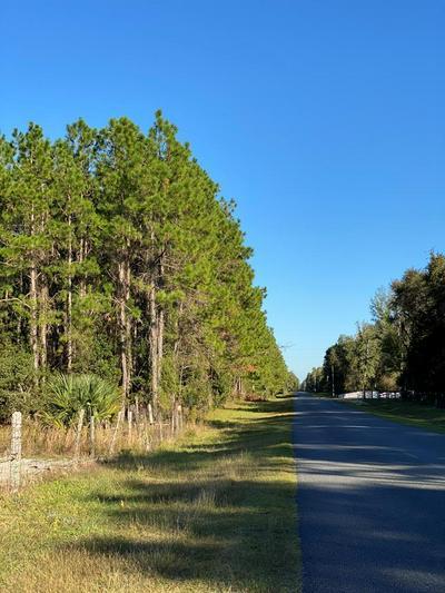 00 NE 424, Old Town, FL 32680 - Photo 1