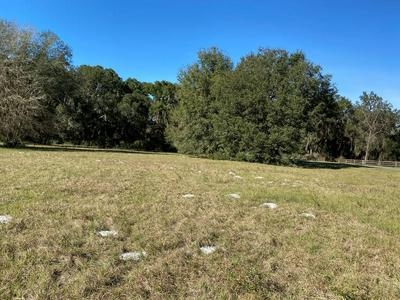 LOT 11 NW 85TH PL & 60TH AVE, Chiefland, FL 32626 - Photo 2