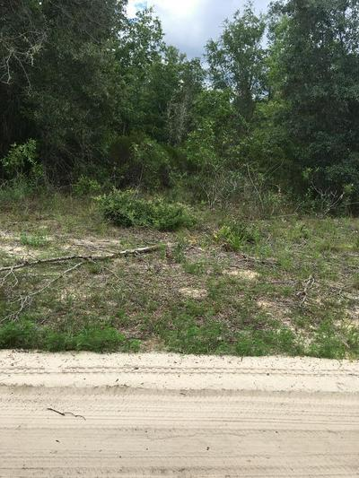 NE 95 AVE, Bronson, FL 32621 - Photo 1