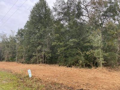 NE 56 ST, High Springs, FL 32643 - Photo 1