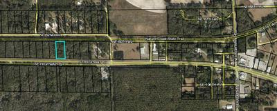 LOT 10 HIGHWAY 19, Old Town, FL 32680 - Photo 2