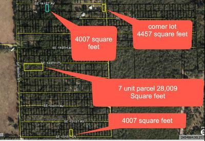 136 SE HIGHWAY 349, Old Town, FL 32680 - Photo 2