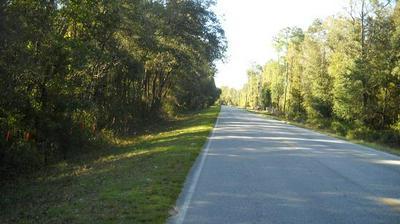 TBD CR 340, Old Town, FL 32680 - Photo 1