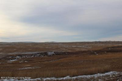 98 STEET SW AND 155 AVE SW, Bowman, ND 58623 - Photo 1