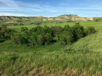E RIVER RD, Medora, ND 58645 - Photo 2