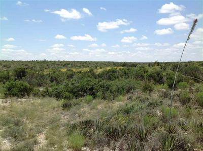 HERITAGE CANYON RANCH (PHASE III) TRACTS 38, Dryden, TX 78851 - Photo 2