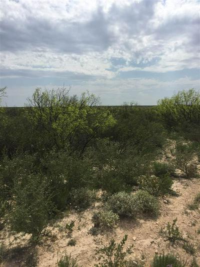 CR 1865 N PUMPVILLE, Pumpville, TX 78871 - Photo 2