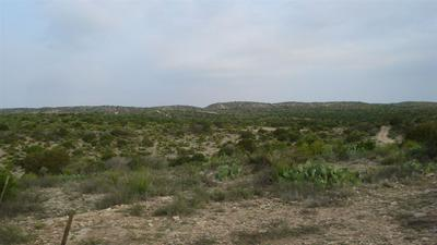 HERITAGE CANYON RANCH (PHASE I) TRACT 14, Dryden, TX 78851 - Photo 2