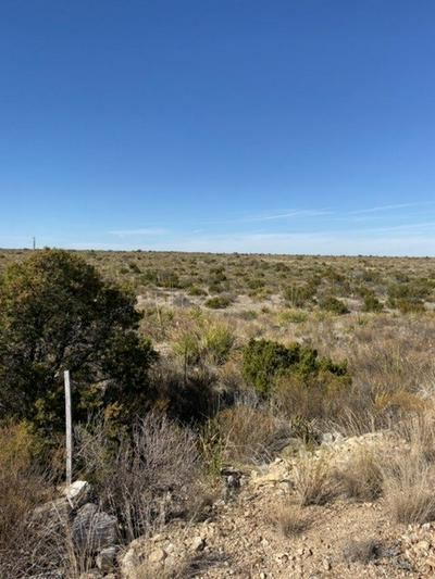 HERITAGE CANYON RANCH (PHASE III) TRACT 51 & 52, Dryden, TX 78851 - Photo 2