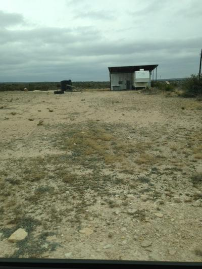 HERITAGE CANYON RANCH (PHASE II) TRACT 24, Dryden, TX 78851 - Photo 2