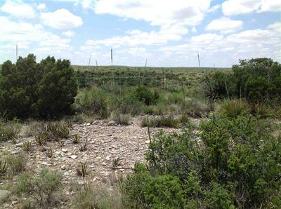 HERITAGE CANYON RANCH (PHASE III) TRACTS 38, Dryden, TX 78851 - Photo 1