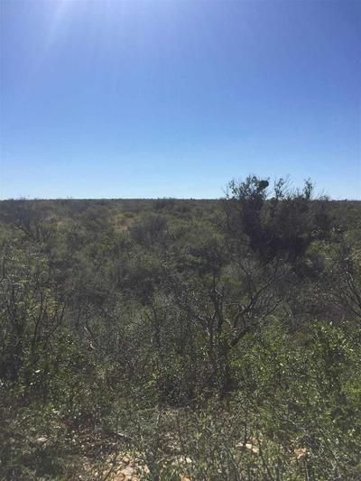 WHITETAIL CREEK RANCH TRACT 36 & 37 (326 ACRES), Dryden, TX 78851 - Photo 2