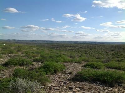 LOT 20 RIO GRANDE RIVER RANCH JNT VENT, Langtry, TX 78871 - Photo 1