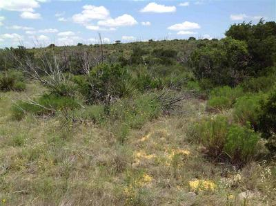 HERITAGE CANYON RANCH (PHASE III) TRACTS 46, Dryden, TX 78851 - Photo 1