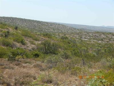 LOT 20 RIO GRANDE RIVER RANCH JNT VENT, Langtry, TX 78871 - Photo 2